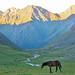 Kyrgyzstan_070