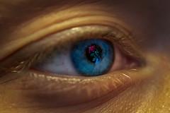 Beauty is in the eye of the beholder - Schönheit liegt im Auge des Betrachters (HMM !) (ralfkai41) Tags: rose definingbeauty flower macro macromondays mirroring eye schönheit spiegelung blume beauty reflektion reflection auge makro