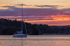 Sailing (anderswetterstam) Tags: city evening light ljus natur nature water lake landscape ship boat sunset summer summertime sailing sky clouds
