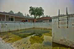 Used to be a swimming pool (agasfer) Tags: 2018 northcarolina travel pentax k3 sigma1020 topaz adjust5 urban decay