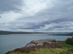 Kyle of Tongue, Tongue, Sutherland, Aug 2018 (allanmaciver) Tags: kyle tongue sutherland scotland north coast heather water causeway clouds grey moody cold allanmaciver