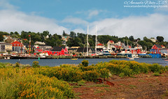 Lunenburg - A New Perspective (sminky_pinky100 (In and Out)) Tags: lunenburg novascotia canada landscape unesco scenic harbour boats colourful atlanticcanada atlanticprovinces maritimeprovinces pretty outdoors town view travel tourism water omot cans2s