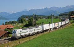 476454 - Einigen (CH) 28/08/18 (James Welham) Tags: 476454 siemens vectron einigen spiez thun 63680 brig niederbottigen coop thunersee bernese oberland railcare