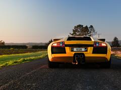 Lamborghini Murcielago (NGztER™) Tags: lamborghini murcielago yellow fightingbull italian supercar luxury fast exotic carphotographer automotivephotography
