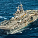 USS Wasp, variant