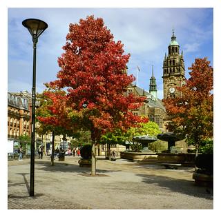 FILM - Autumn around the corner