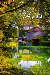 Abbaye de Bèze 01 (mg photographe) Tags: abbaye beze burgundy bourgogne vert verdure foret rivière reflets reflect