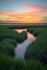 Nauset Marsh at Fort Hill (BenjaminMWilliamson) Tags: capecod coast colorful eastham forthill grasses green image landscape ma massachussetts natural nature nauset newengland scurve scenery scenic sky sunrise usa marsh saltmarsh spring