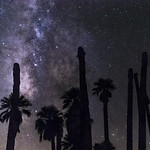 Milky Way Palm Trees at Corn Springs, California thumbnail