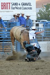 "Baker County Tourism – basecampbaker.com 47235 (Base Camp Baker) Tags: oregon ""easternoregon"" ""bakercountytourism"" basecampbaker ""basecampbaker"" ""bakercounty"" rodeo cowboys ""bakercitybroncandbullriding"" ""bakercity"" ""oregonrodeo"" ""minersjubilee"" oregonrodeo ramrodeo traveloregon travel tourism roughstock rodeolife bulls bullriding"