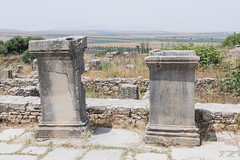 2018/07/09 12h38 stèles, Volubilis (Valéry Hugotte) Tags: 24105 antiquité maroc volubilis canon canon5d canon5dmarkiv pierre romain ruines socle stèle fèsmeknès ma