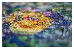 Sea of colors _ MM _ Multicolor (Werner D.) Tags: rot wernerd macro details ölgemälde bild farben colors nahaufnahme unschärfe dof bokeh art oilpainting macromondays multicolor