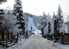 Zakopane-November'17 (63) (Silvia Inacio) Tags: zakopane snow neve poland polska polónia tree árvore nosal mountain montanha