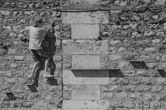 Les rêveries photographiques d'un promeneur solitaire 010 (letexierpatrick) Tags: noiretblanc monochrome blackandwhite blanc black noir white bw noirblanc paris seine france europe extérieur explore nikon nikond7000