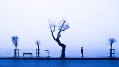 A foggy day (cekic photography) Tags: foggy bosphorus istanbul citylife city scape people silhouette landscape tree nature alone melancholy turkey middle east europe travel sea blue life photography photographers photojournalist wallpaper art artofvisuals skylines way faydalialetcekic fujifilm worker