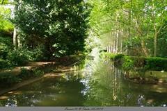 la rivière près du Château de Vendeuvre (Barnie76@ ,) Tags: rivière effets reflets vert château vendeuvre eau