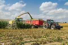Corn Silage | KRONE // CASE IH // ANNABURGER (martin_king.photo) Tags: mais corn cornsilage maisfeber 2018harvestseason summerwork powerfull martin king photo machines strong agricultural greatday great czechrepublic welovefarming agriculturalmachinery farm workday working modernagriculture landwirtschaft martinkingphoto machine machinery field huge big sky agriculture tschechische republik power dynastyphotography lukaskralphotocz day fans work place harvester forage clouds inaction action worker eos new weather flickr krone kronebigx kronebigx630 forageharvester caseihpuma230cvxplatinumedition annaburgerhts2279 tandem trailer caseihpuma platinumedition caseih puma platinum edition red