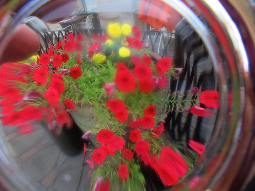 fx4813 Glass distortion