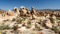 Let There Be Rock (Torsten Reimer) Tags: coloradodesert usa sand landscape landschaft northamerica himmel wüste hills shrubs rocks california unitedstatesofamerica sky trees hügel joshuatreenationalpark desert felsen twentyninepalms unitedstates us