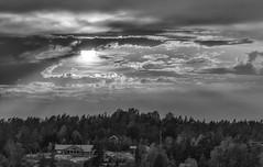 A Dynamic evening (BigWhitePelican) Tags: sweden stockholmarchipelago sun sunny blackandwhite cloudy canoneos70d adobelightroom6 niktools 2018 august