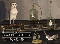 JIAN Barn Owl Collection ( FaMESHed Sept. '18) ([JIAN]) Tags: secondlife mesh animals avians birds bird owl barnowl jian companion wanderer cage perch pets wild life