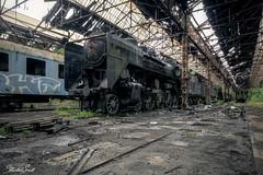Ghost train (Michal Seidl) Tags: abandoned railway depot steam locomotive train hdr urbex infiltration hungary canon lost forgotten decay red star opuštěné depo lokomotiva parní