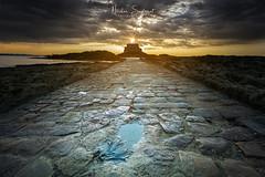 Sur le chemin du Petit Bé (Njones03) Tags: 2018 bretagne landscape montsaintmichel nicolassavignat saintmalo seascape nisifilters nisifrance nisi