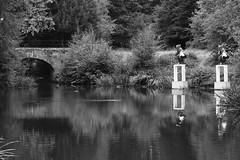 pond statue (gavinkenyon564) Tags: ysp yorkshiresculpturepark monochrome water reflection nikon nikon1j5 blackandwhite scenery landscape sculpture