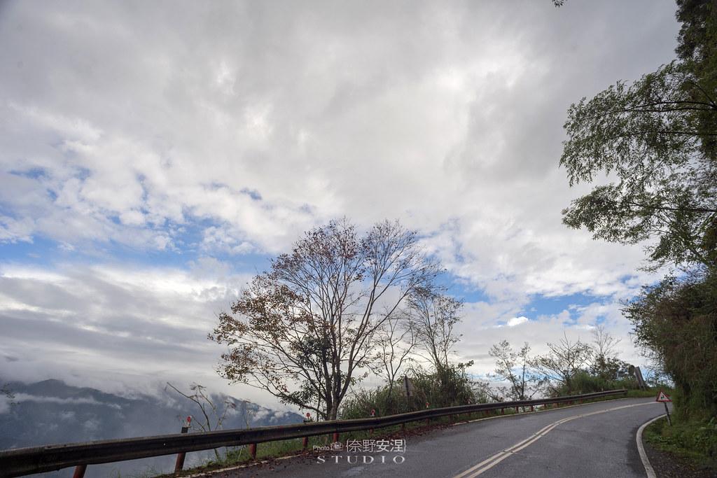 太平山翠峰湖環山步道 |走在泥濘的道路上,只為途中美景 | 宜蘭大同鄉2