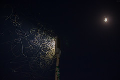 Insects hitting a streetlamp somewhere near the outskirts of Jaipur, Rajasthan. (SuranjanDasIndia) Tags: 500d canon insects jaipur lightpainting lowlight moon nighttime rajasthan streetlamps streetlights