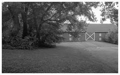 OM2n_35mm_BW_XX_016.jpg (Tony Roman Photography) Tags: ff1monobath om2n bwxx 35mm blackandwhite