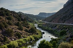 morning commute (rovingmagpie) Tags: newmexico pilar riogrande painted orton river rio summer2018 nm68 route68 commuting commute