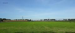 landschap bij Breudijk met op de achtergrond de spoorbaan bij Putkop (bcbvisser13) Tags: landschap landscape landschaft field panorama panoramique treinen trains zug putkop breudijk gemwoerden provutrecht nederland holland eu