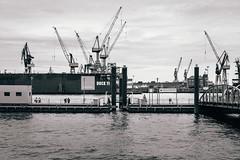 Dock 11 (MobilShots) Tags: blende1net patrickgorden city elbe fotografhamburg fuji fujifeed fujifilm fujinon fujipassion hafen hamburg harbour outdoor urban wasser water xt1 blackandwhite monochrome harbor architecture bridge