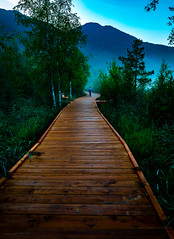 Early morning hike in Seefeld (robert.lindholm87) Tags: leica leicaq austria boardwalk footbridge wood wooden mountains green nature fog landscape lightroom raw tourist man portrait seefeld wildsee