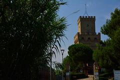 DSC_7587_4788. Torre del Cerrano. (angelo appoloni) Tags: abruzzo teramo coast ancient tower abruzzi litorale teramano antica torre cerrano