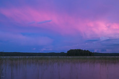 Pink Lake 2 (Richard Holding) Tags: finland finlande lac lake landscape m43 nature olympus omd paysage summer été