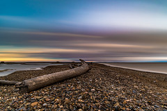 Long exposure of a 230AM sunset on the beach in Tuktoyaktuk, NT (Chriskellyphotography) Tags: sunset beach driftwood longexposure tuktoyaktuk northwestterritories pingo