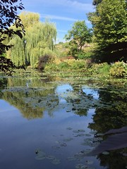 Spiegelungen / Reflections (schreibtnix on 'n off) Tags: reisen travelling frankreich france giverny claudemonet garten garden teich pond spiegelung reflections appleiphone6plus schreibtnix