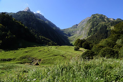 Hospice de France (Bert#) Tags: france pyrenees hospicedefrance nature mountains col green travel hike