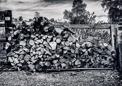 Cold nights in Petoskey (Jack Blackstone-On a break) Tags: sep2 firewood bw petoskey 2018 em1markii michigan contrast structure copyright