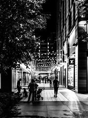 CityCenterDC (Beau Finley) Tags: beaufinley monochrome mono bw bwdc blackandwhite black white dc districtofcolumbia washingtondc citycenterdc citycenter people dog leash stroller contrast city