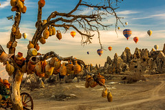 Wish (BeNowMeHere) Tags: ifttt 500px trip benowmehere cappadocia goreme goremenationalpark landscape nature sky sunrise tree turkey wish wishtree airballoon balloon color colorful hotairballoon kapadokya travel