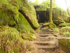 DSCN5594 (norwin_galdiar) Tags: bretagne brittany breizh finistere monts darrée nature landscape paysage