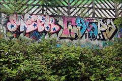 (Alex Ellison) Tags: meph caspa add northlondon millhill urban graffiti graff boobs halloffame