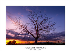 Rural sunset and tree silhouette (sugarbellaleah) Tags: countryside sky sunset tree brnches silhouette clouds stunning colour paddock rural outback dusk light field fence nature environment nsw australia greenethorpe