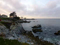 Pacific Grove, Monterey Peninsula, CA (ArgyleMJH) Tags: pacificgrove oceanviewblvd loverspoint montereypeninsula geology igneous plutonic granitic