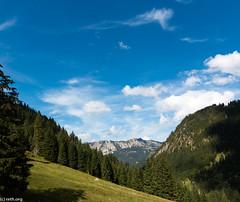 (der-kruemel) Tags: 1835 1835mm 70d baum berge bäume canon canoneos70d eos ebenbachalm flora himmel panorama sigma sigma1835mm sigma1835mmf18 sigma1835mmf18dchsm sky tannheimertal tirol wald wiese wolken forest meadow tree wood österreich