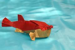 Fugu (Takuro Kashiwamura) (De Rode Olifant - off) Tags: takurokashiwamura fugu origami paper paperart marjansmeijsters origamifish origamifugu fish diagrams 3d papiroflexia
