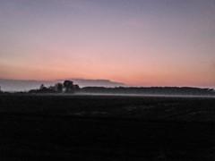 Foggy Fields at Evening (Sadden_) Tags: poland polish field fields fog evening sunset dusk clear sky barren low res mood forest distant